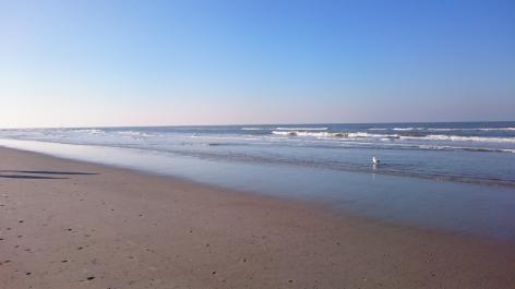 Schreiben am Meer